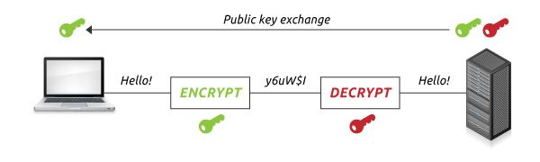 SSL sertifikato viešas raktas